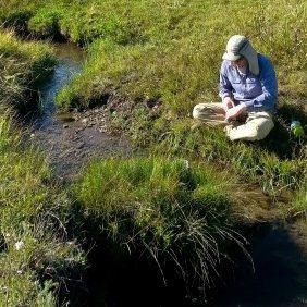 creek restoration work